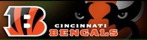 Cinc Bengals